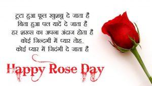 rose day,valentine,valentine week